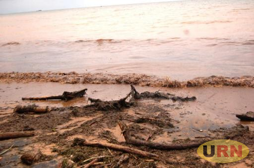 Wastes disposed at the shoreline of lake victoria.