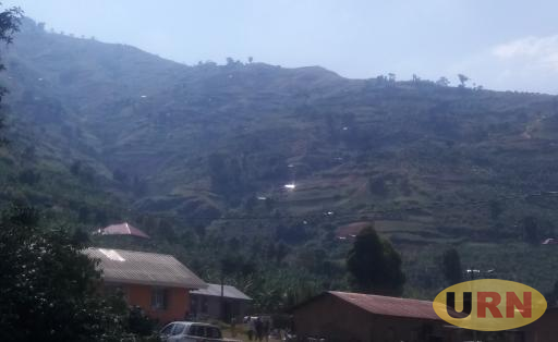 The mountainous area of Karangura sub county where about 30 fanmiles have migrated from in fear of 'war'.
