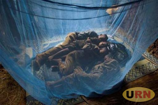 Children sleeping under a treated mosquito net.