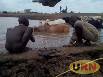Young herdsman bathes while the other collects the same water for drinking at Lokisile water dam.